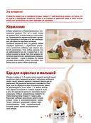 Собаки — фото, картинка — 10