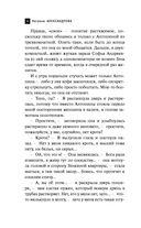 Щит царя Леонида — фото, картинка — 6