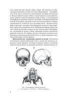 Травмы и восстановительная хирургия челюстно-лицевой области — фото, картинка — 6
