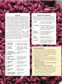 Вино и еда. Краткий курс для гурманов — фото, картинка — 12