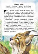 Рассказы и сказки о животных — фото, картинка — 11