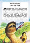 Рассказы и сказки о животных — фото, картинка — 5