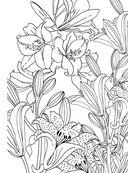 Дивный сад. Раскраска-антистресс для творчества и вдохновения — фото, картинка — 6
