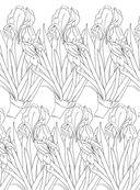 Дивный сад. Раскраска-антистресс для творчества и вдохновения — фото, картинка — 8