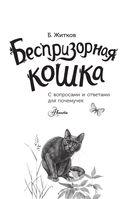 Беспризорная кошка — фото, картинка — 1