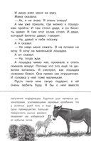 Беспризорная кошка — фото, картинка — 13