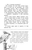 Беспризорная кошка — фото, картинка — 4