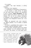 Беспризорная кошка — фото, картинка — 9
