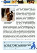 Собаки — фото, картинка — 2