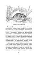 Такие разные животные — фото, картинка — 12