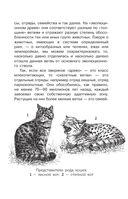 Такие разные животные — фото, картинка — 13