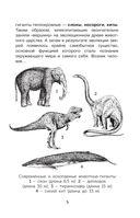 Такие разные животные — фото, картинка — 5