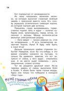 Кот да Винчи. Нашествие лунатиков! — фото, картинка — 14