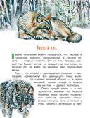 Лесная газета — фото, картинка — 2
