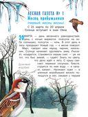 Лесная газета — фото, картинка — 6
