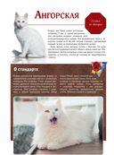 Кошки — фото, картинка — 14