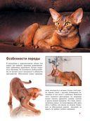 Кошки — фото, картинка — 9