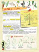 Энциклопедия для мальчишек и девчонок. Книга приключений — фото, картинка — 8