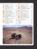 Библия байкера: 291 непреложный закон о снаряжении, вождении и ремонте — фото, картинка — 9