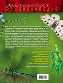 Красная книга. Бабочки, жуки и другие насекомые — фото, картинка — 11