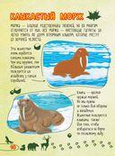 Большое путешествие по миру животных — фото, картинка — 10