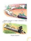 Сказочные истории в картинках — фото, картинка — 9