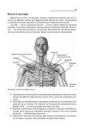 Лечебные упражнения для плечевых суставов — фото, картинка — 8