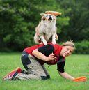 Диск для дрессировки собак