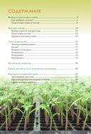 Здоровая рассада для сверхурожая — фото, картинка — 2