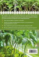 Здоровая рассада для сверхурожая — фото, картинка — 4