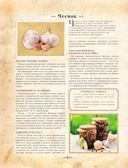 Большая книга советского домоводства — фото, картинка — 6