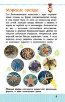 Жители морей и океанов — фото, картинка — 5