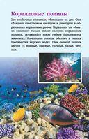 Жители морей и океанов — фото, картинка — 6