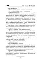 Юджин - повелитель времени. Книга 8. Королевство Гаргалот — фото, картинка — 10