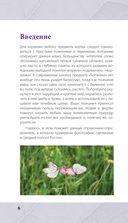 Лечебные травы. Иллюстрированный справочник-определитель — фото, картинка — 5