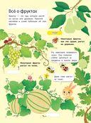 Фрукты и овощи (+ наклейки) — фото, картинка — 2