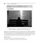 Книга веб-программиста: секреты профессиональной разработки веб-сайтов — фото, картинка — 15