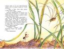 Как муравьишка домой спешил — фото, картинка — 1