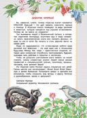 Красная книга России — фото, картинка — 2