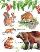 Такие разные животные — фото, картинка — 11