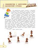 Шахматы для детей (с наклейками - мягкая обложка) — фото, картинка — 5