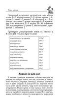 Сад, цветник и огород по-русски — фото, картинка — 12
