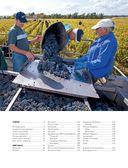 Мир вина. Вина, сорта, виноградники — фото, картинка — 5