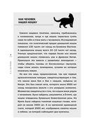 Планета кошек — фото, картинка — 6